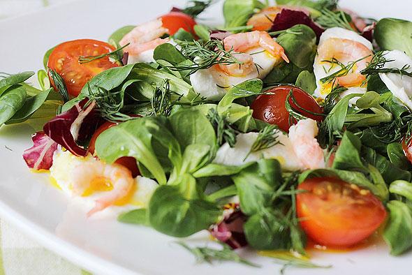 INSALATE Salate