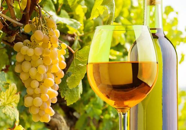 VINI BIANCHI Offene Weißweine